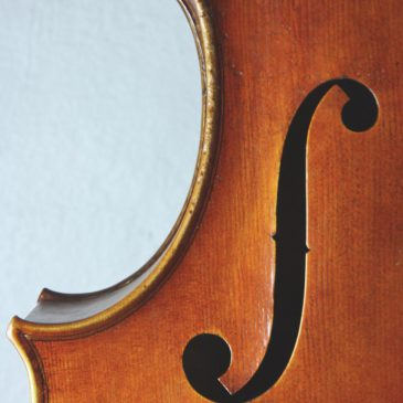 Jay Haide cello Ruggieri-modell
