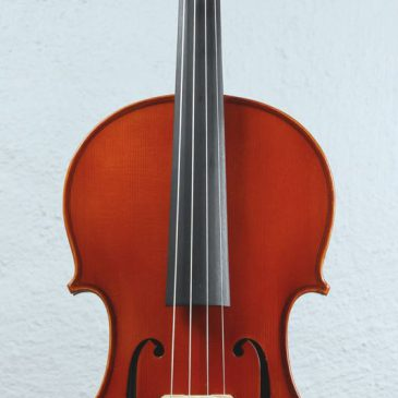 Jay Haide viola 40,3cm