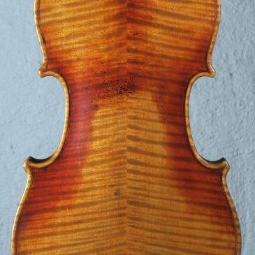Fin violin